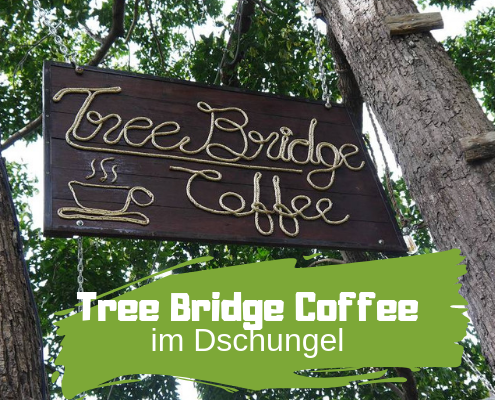 Tree Bridge Coffe im Dschungel