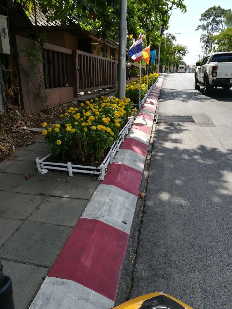 Blumen für den Prinz